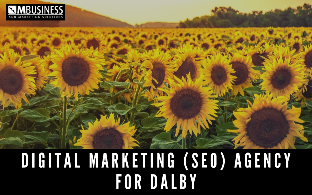 digital marketing and SEO agency for Dalby